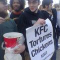 Peta VS KFC