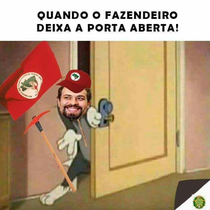 MST - meme