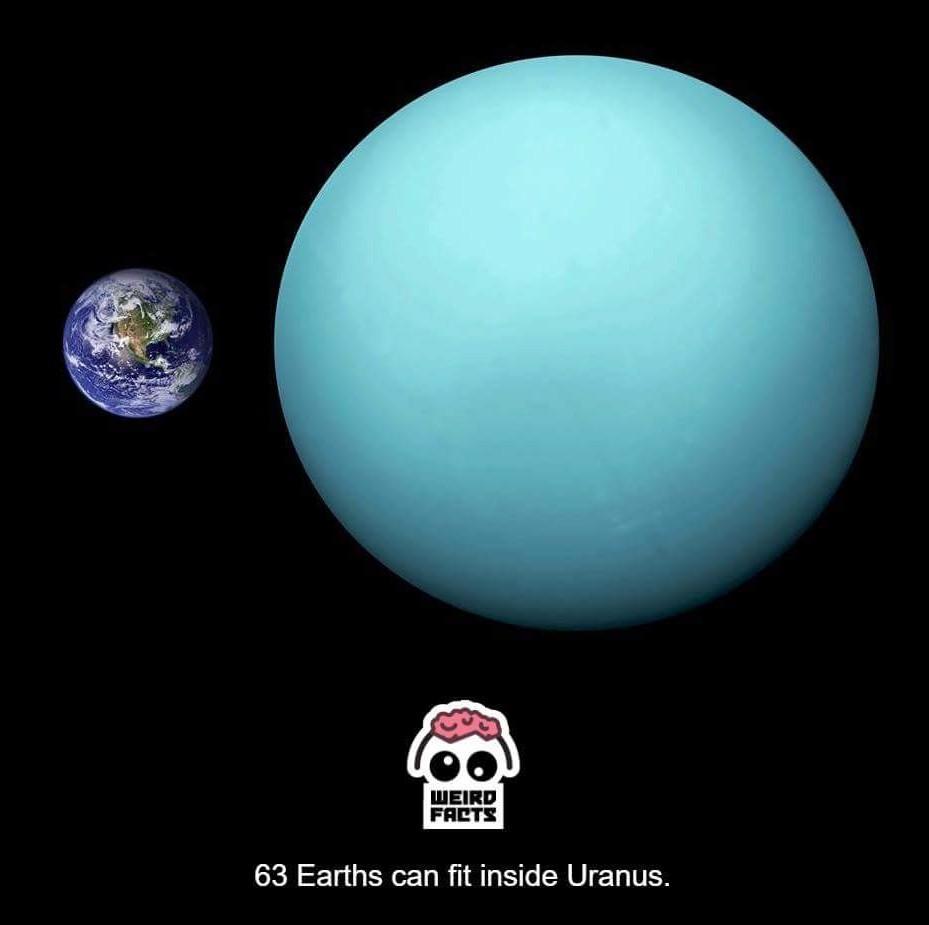 What else fit in Uranus? - meme