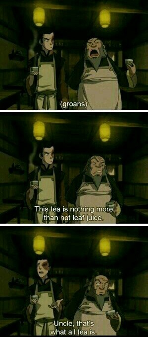Iroh is my idol - meme