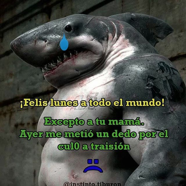 #MentalidadDeTiburon - meme