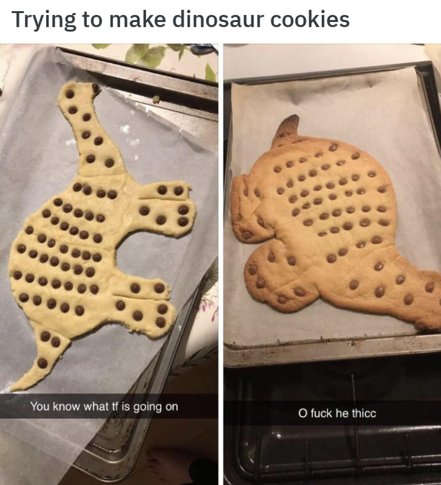 Trying to make dinosaur cookies - meme