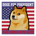 Vote Doge, Make America WOW again!