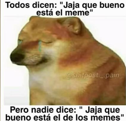 el papi chems - meme