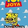Toy joya