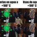 BACTERIAS Y OSOS DE AGUA