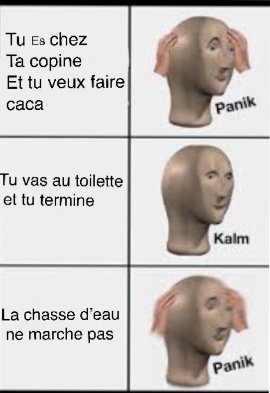 Panik trop de panik - meme