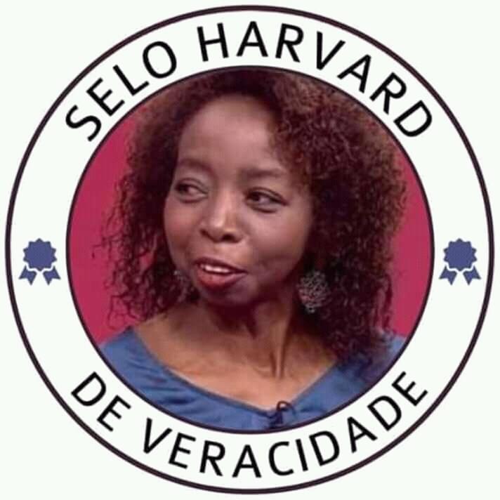 Selo Harvard - meme