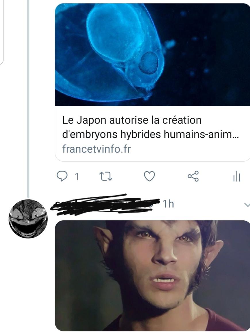 Zi loup-garou - meme