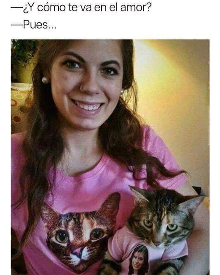 Eh gato!! - meme
