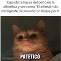 Patetic