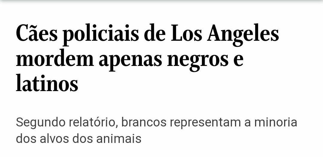 Cachorros racistas - meme