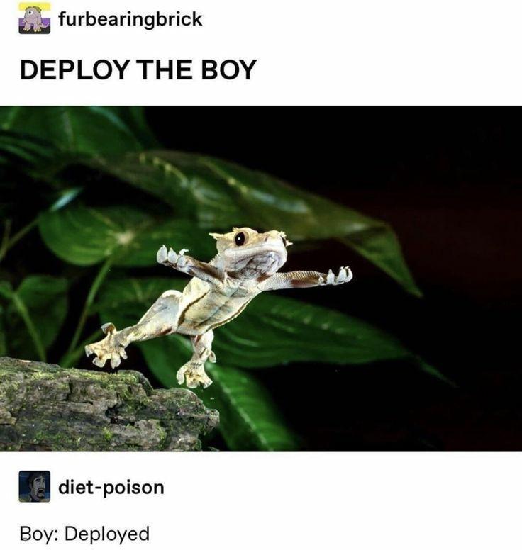 deploy the boy - meme