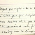 Notes Left Behind - They are concerned for the safety of the elephants.
