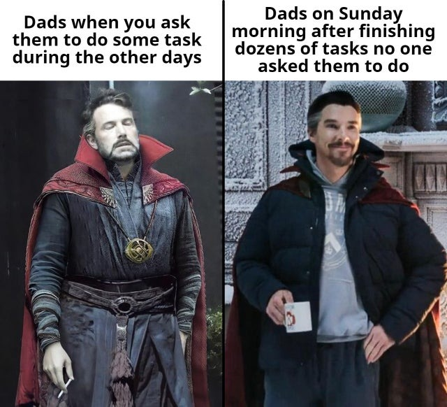 Dads and their tasks - meme