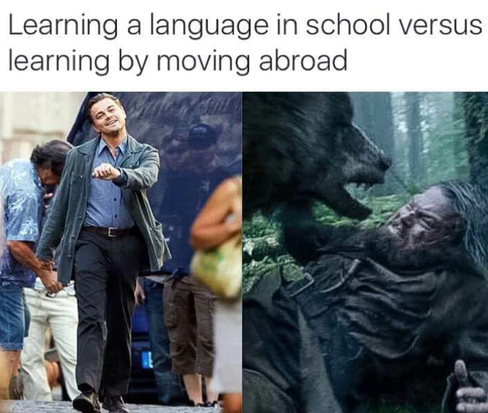 Leo is the source of great examples - meme