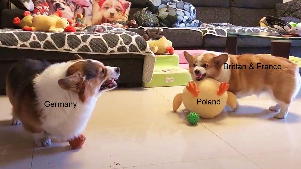 Oh look, a war - meme