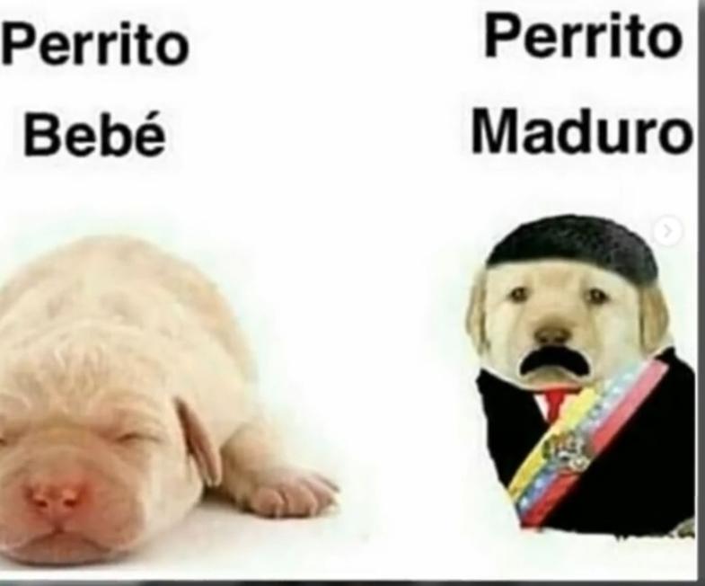 Top Memes De Venezuela En Español :) Memedroid