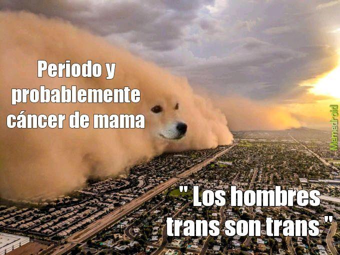 Trans es un gay evolucionado - meme
