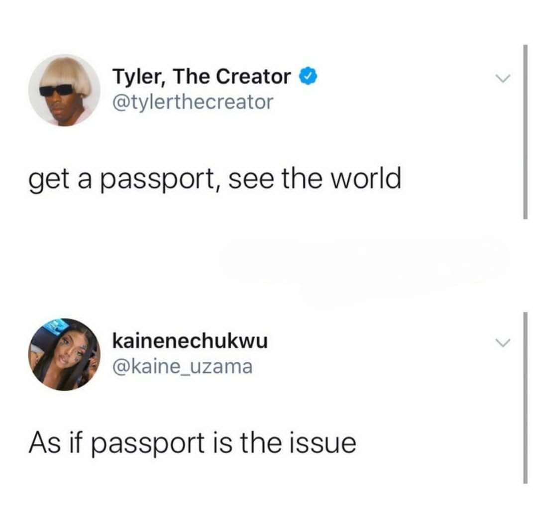I have pasport but still cant go anywhere - meme