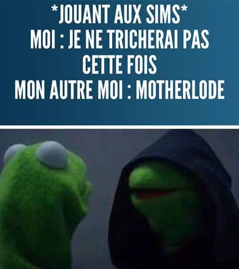 #Motherlode - meme