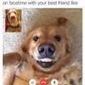 It's Doge