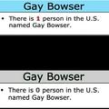 so long, gay bowser