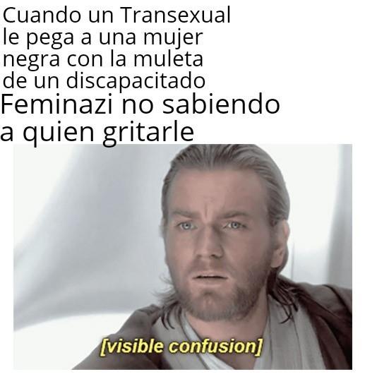 Feminazis - meme