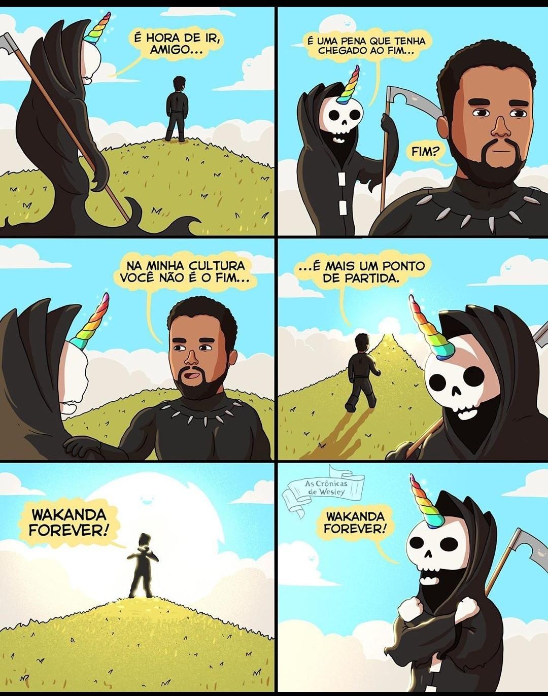 Wakanda pra sempre - meme