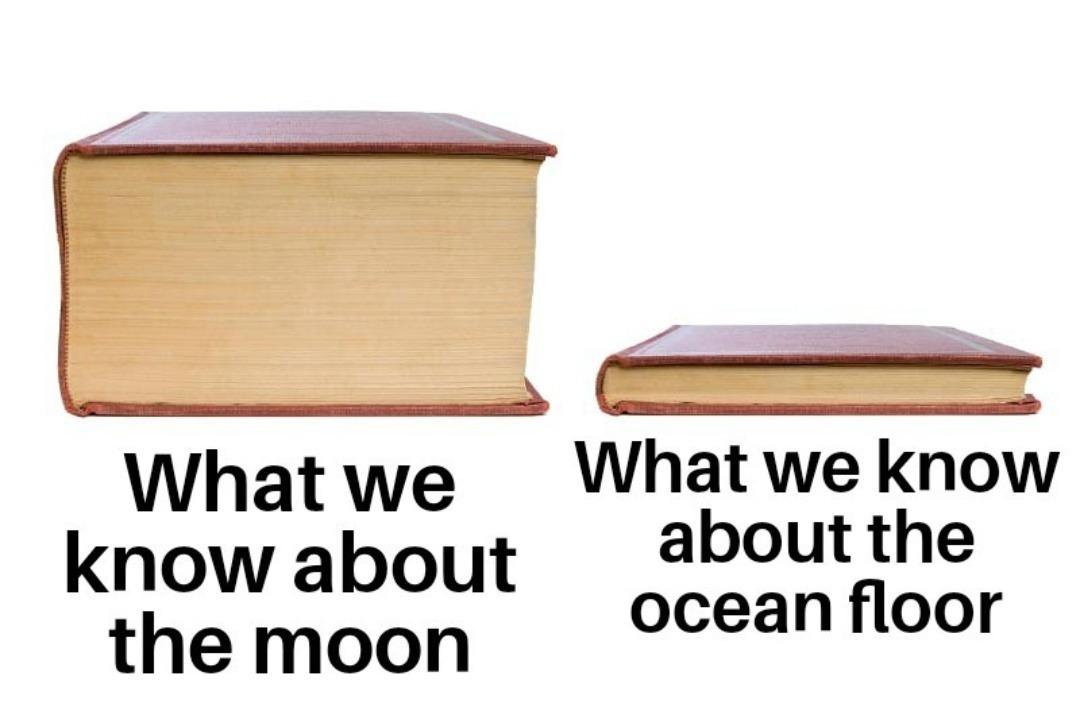 Data - meme