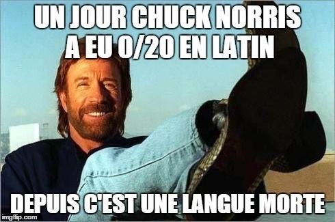 Chuck Norris /1 - meme
