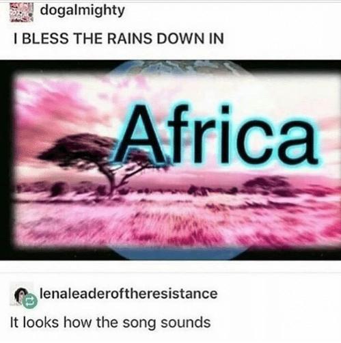 I Bless the Rains! - meme