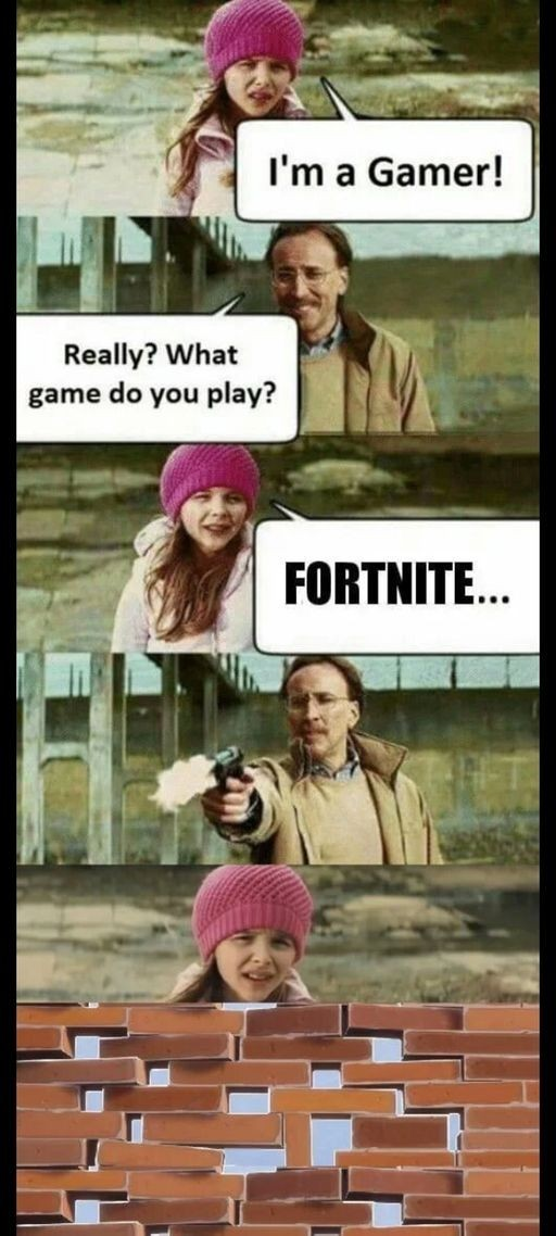 Im a gamer - meme