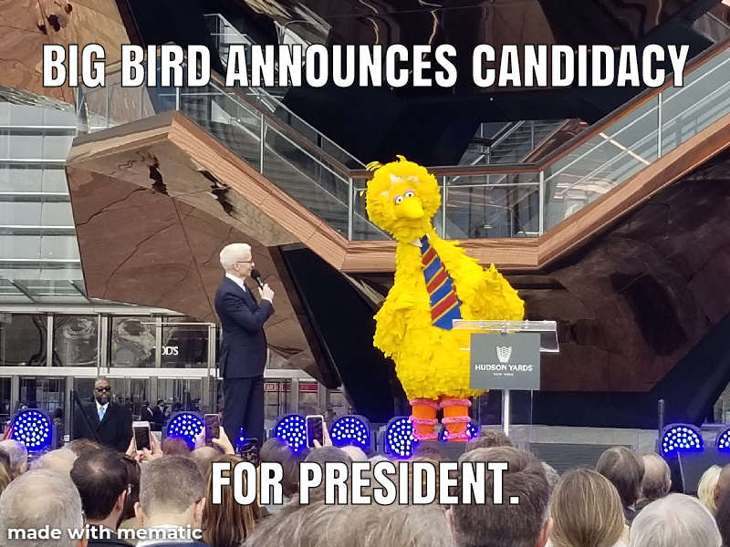 The best candidate. - meme