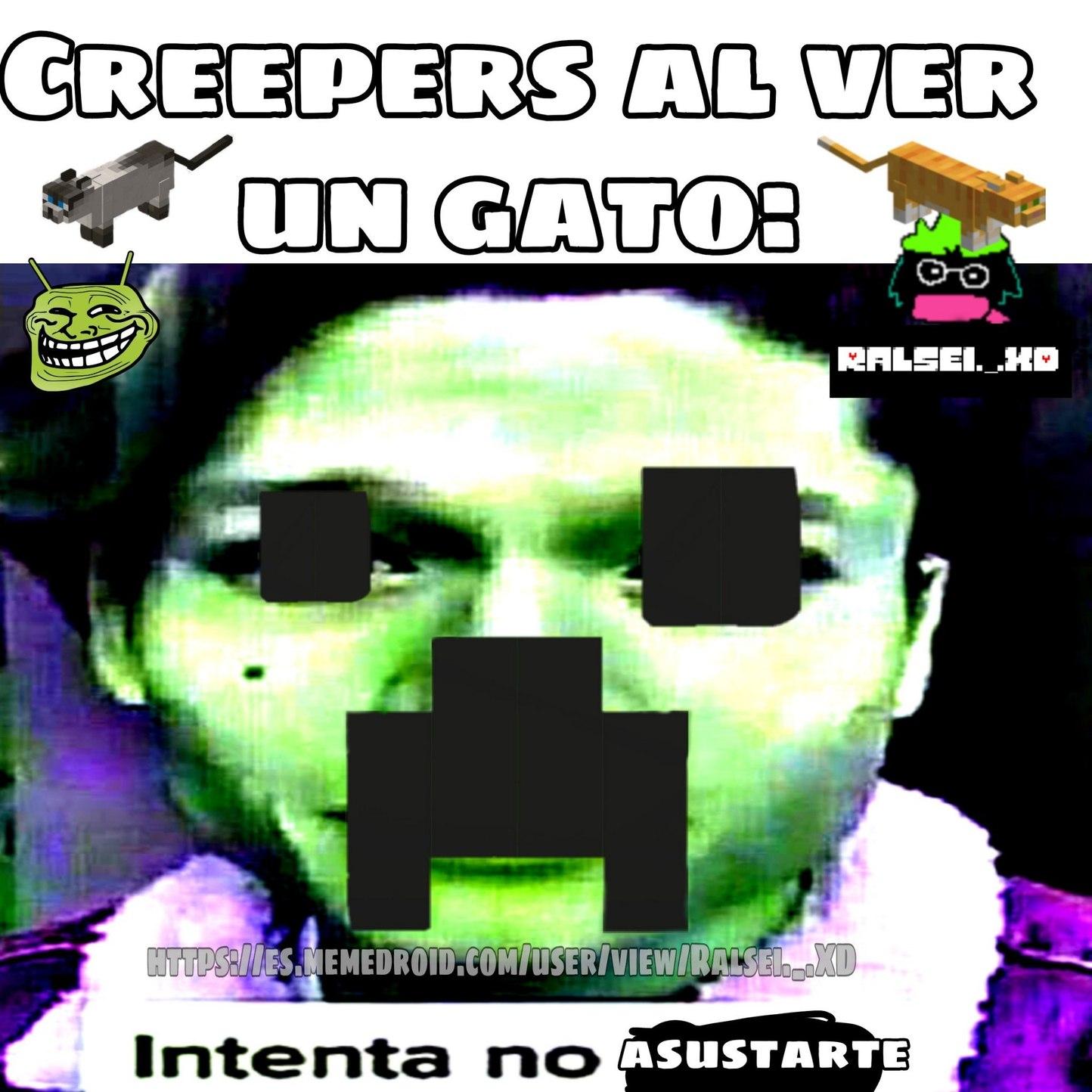 El Gato Siames Es El Mejor En Minecraft - meme