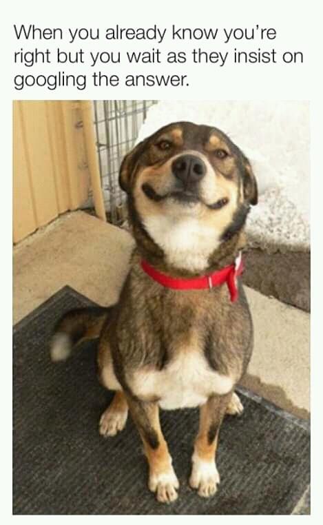 Same face I make when it's time for my pocket money - meme
