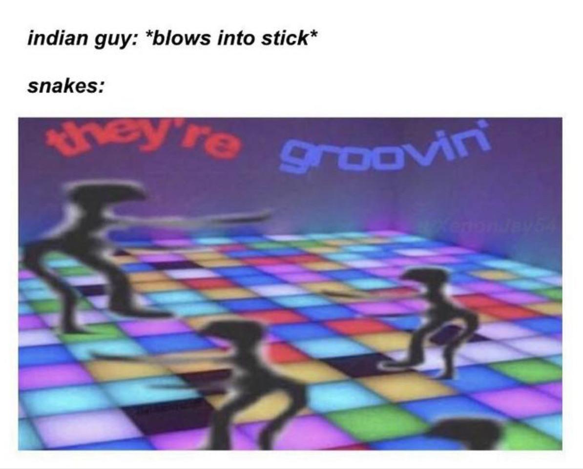 Gy - meme