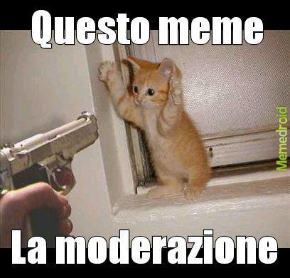 Zaone - meme