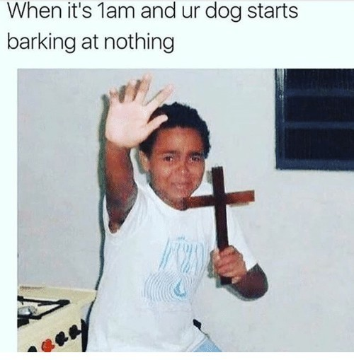 When your dog barks at nothing - meme