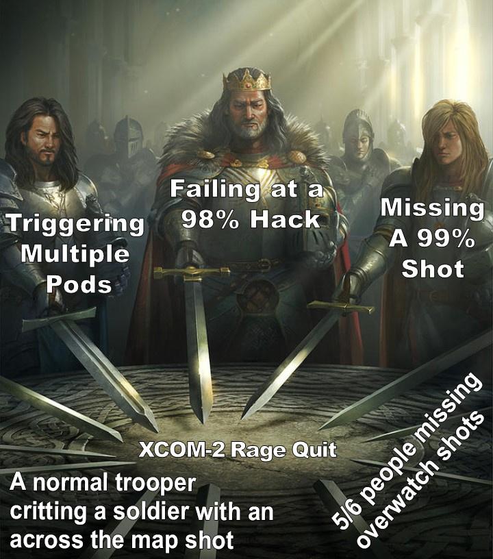 But CoMmAnDeR - meme