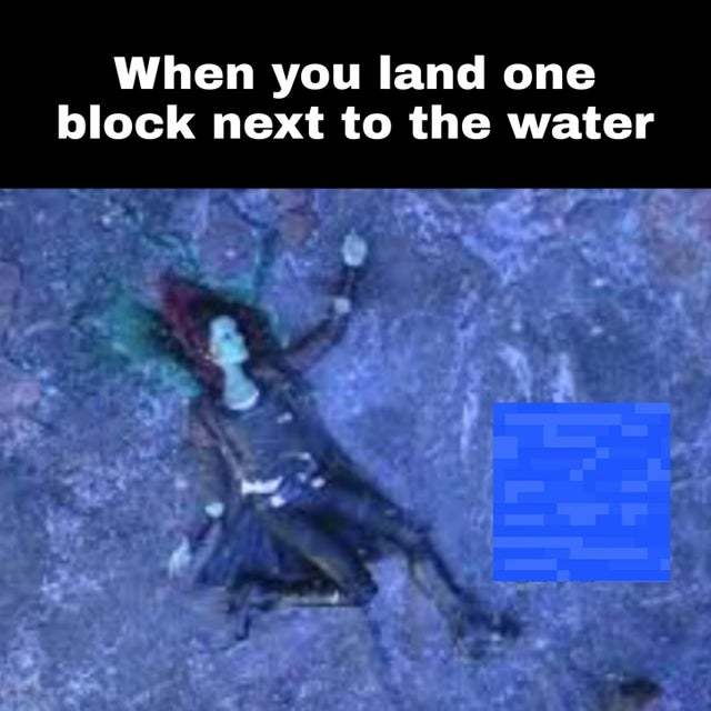 When you land one block next to the water - meme