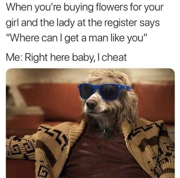 #MeDontCheat - meme