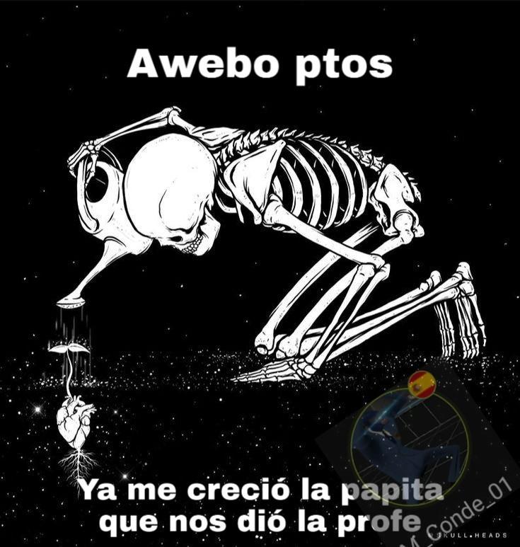 Calacas shidas - meme