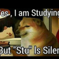Dying studying