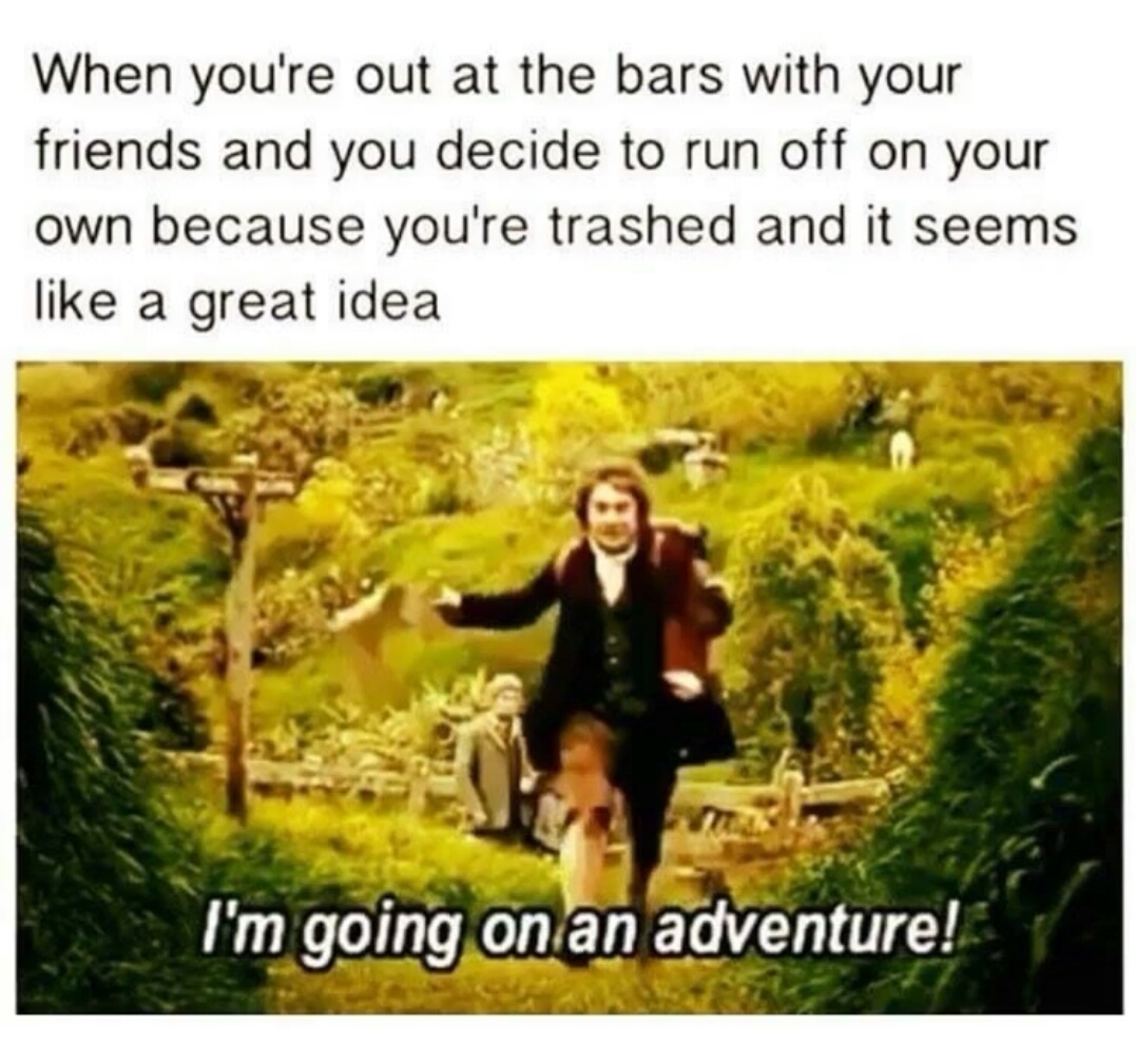 Everything is an adventure when you are drunk. - meme