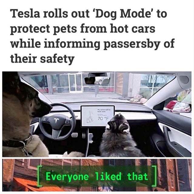 Tesla Rolls out dog mode - meme