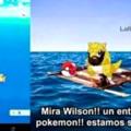 Pobre pokemon che