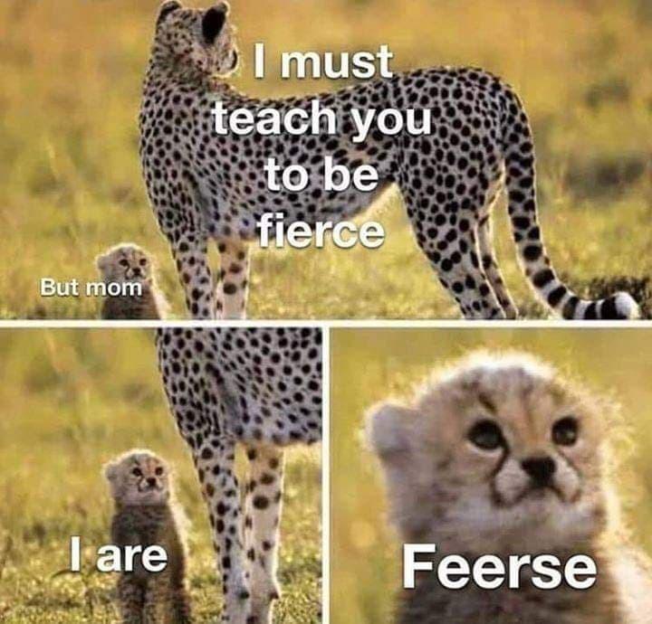 I are.... Feercee - meme