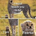 I are.... Feercee