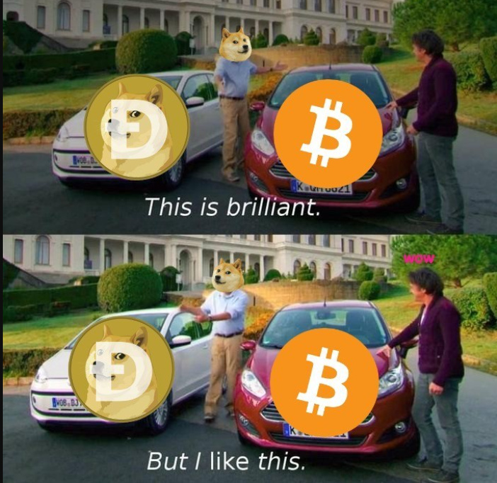 someone should make a petition to make doge coins the new cryptocurrency - meme